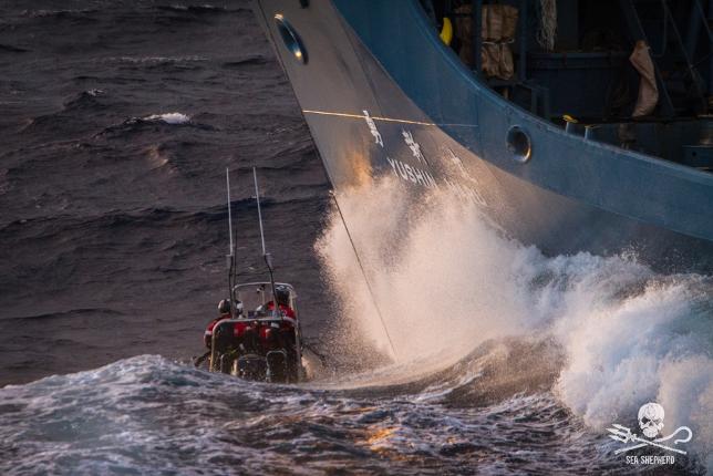 Intervention Sea Shepherd sur un baleinier japonais - © Sea Shepherd